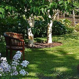 Gash Gardens Castletown